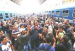 беженство в Украине